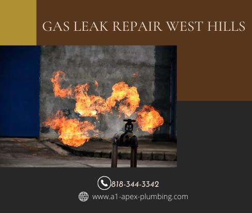 Minor gas leak repair in West Hills