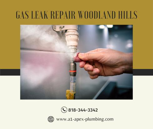 Natural gas leak repair cost in Woodland Hills
