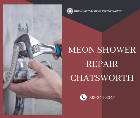 Moen shower handle removal in Chatsworth