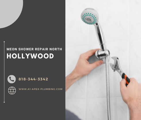 Moen shower handle removal North Hollywood