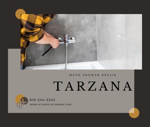 Moen shower handle replacement in Tarzana